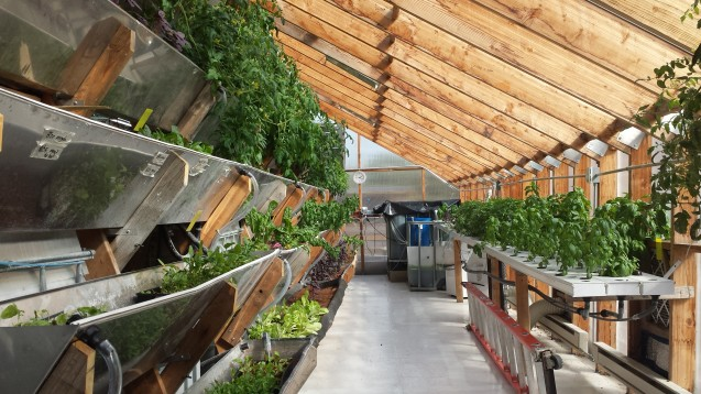Edenworks uses aquaponics technology
