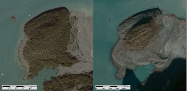 An island in Taan Fiord, about 10 km from the landslide, shown by satellite in 2014 (left) and a few days after the landslide and tsunami (right). (Geospatial support provided by the Polar Geospatial Center. Imagery Copyright 2015 DigitalGlobe, Inc.)