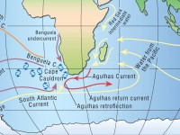 The Agulhas Current and associated flows. Credit: Arnold L. Gordon.