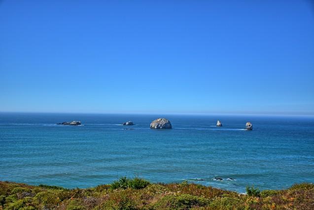 The Redfish Rocks Marine Reserve in Oregon was established in 2009. Photo: Kirt Edblom