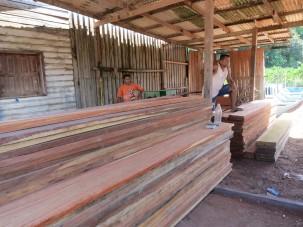 Amapa lumber yard DF
