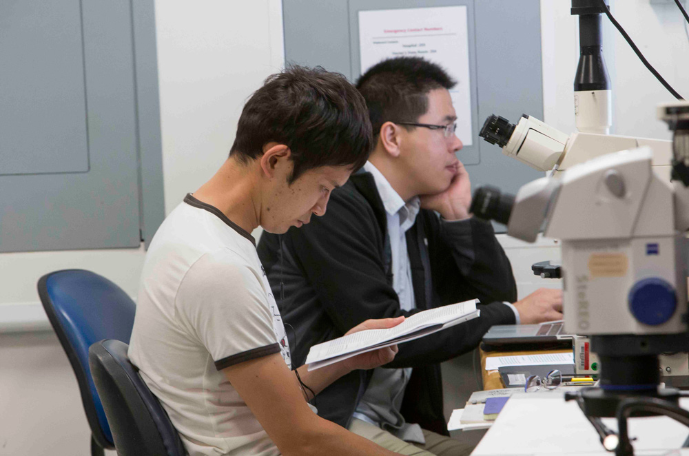 The shipboard labs are ready for scientists to go to work. Kaoru Kubota of the University of Tokyo and Xibin Han of China work on reports in the core lab. (Tim Fulton)