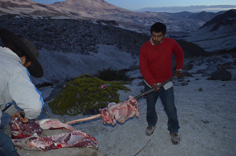 On the last night in the field, the arrieros expertly prepare a lamb for roasting over an open fire.