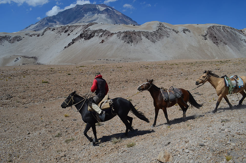 In this roadless, waterless region, a foot expedition requires help. Hired arrieros—rural livestock herders—bring in strings of pack horses to carry water, food and equipment.