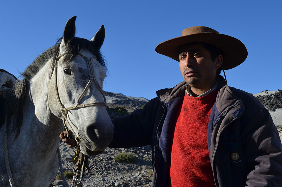 """Silvestre """"Don Carmelo"""" Adasme, leader of the arrieros. The volcano destroyed many mountain pastures where his ancestors and neighbors once herded livestock. But his family still keeps horses, cattle, sheep and goats in outlying areas that were spared."""