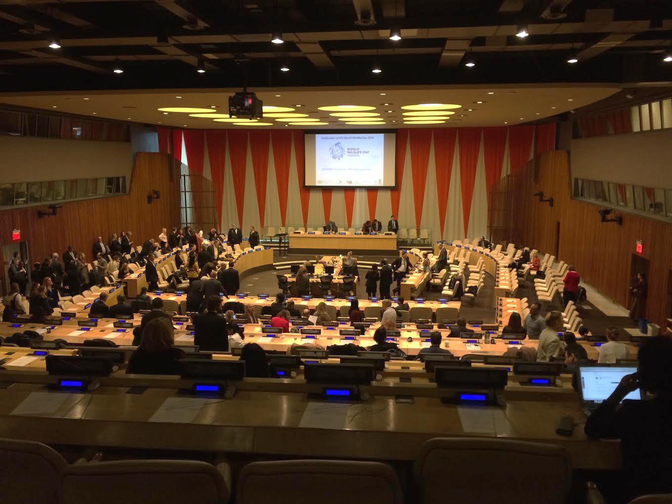 UN Panel WWD
