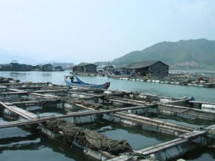 Aquaculture in Fuzhou, China