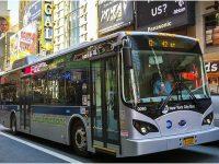 NY_Transit-BYD_Bus