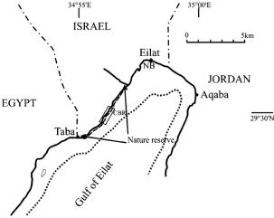 General map of the northern Gulf of Eilat, Red Sea (NB = North beach; CBR = Coral Beach Reserve). Map from B. Rinkevich / J. Exp. Mar. Biol. Ecol. 327 (2005).