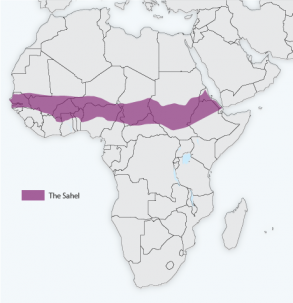 Map of Africa and the Sahel region, shaded in purple. Figure: IRI