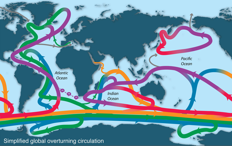 Ocean overturning circulation illustrated. Courtesy of co-author Lynne Talley.
