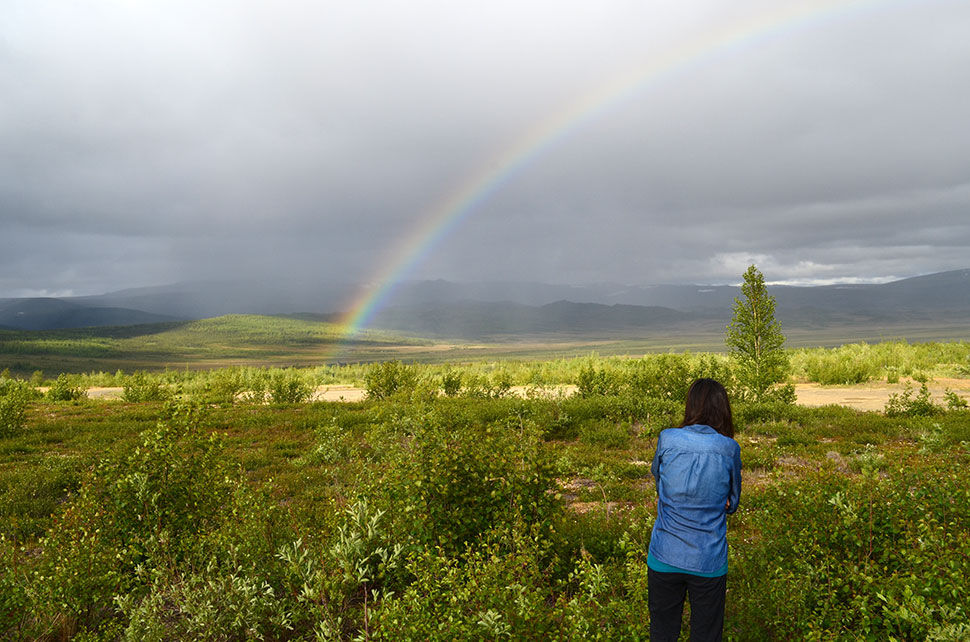 In northern Alaska, just past the arctic circle, boreal forest begins giving way to tundra. The largest ecological transition zone on earth, the so-called tree line circles the globe for more than 8,300 miles. On a June evening, Lamont-Doherty ecologist Natalie Boelman observes fast-changing weather closing in.