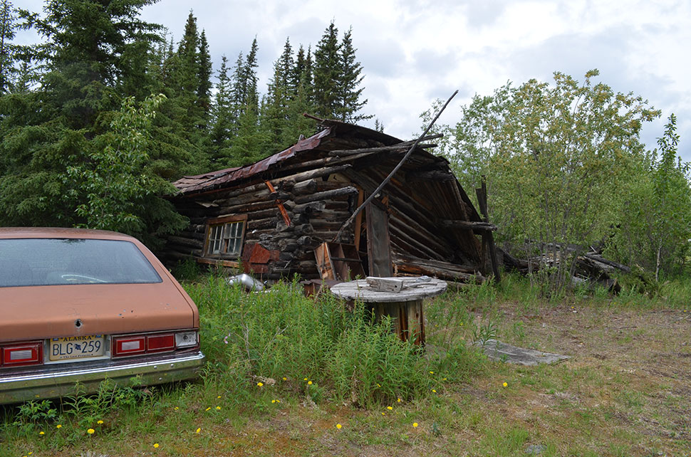 The researchers stayed each night at the decayed early 1900s gold-mining town of Wiseman (though not at this cabin). Wiseman became reachable by road in the 1990s, and now tourists can drive here—another sign that the far north is opening up.
