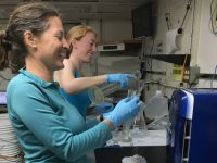 Amanda Netburn of NOAA (left) and Doreen McVeigh of North Carolina State University work in a shipboard lab. Photo: Bridgit Boulahanis