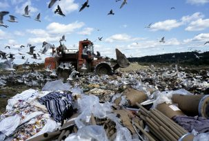A landfill in Danbury, CT Photo: United Nations Photo