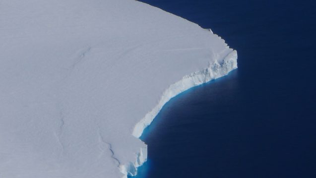 Ice shelves sit primarily below the ocean surface. Getz measures close to 200 ft. at the front but with another 1000 ft. below the surface. The rich blue color along the front edge is from that deep reaching ice front. (Photo M. Turrin)