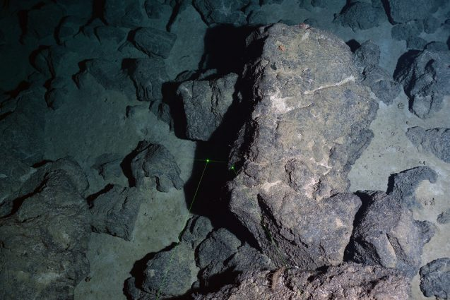 Basalt and sediment on the sea floor, as seen from the research submarine.