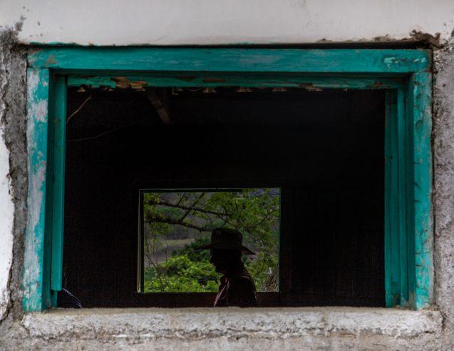 Photo 15d window