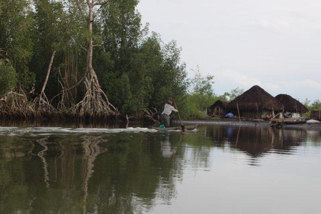 Photo 24c village-mangoves