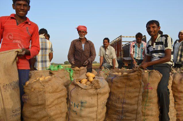 Photo 5b farm-laborers
