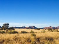 18334609 - african savanna landscape, namibia, south africa