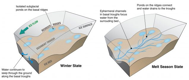 The illustration shows where water pools in winter and flows during the melt season. Graphic: Winnie Chu