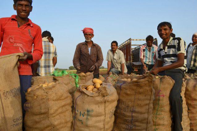 Photo 5b farm-laborers-sotp