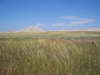 Oglala National Grassland, Nebraska. Photo: Brian Kell