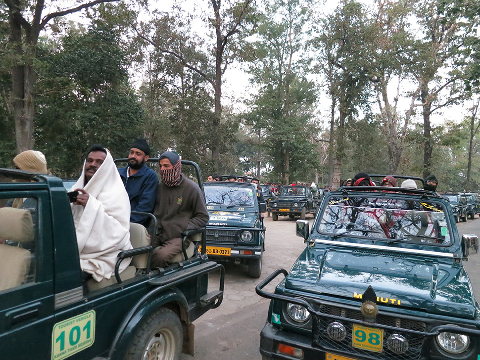 When the sun comes up, tourists charge in. Conservation is big business here; the daily allotment of visitors is usually sold out.