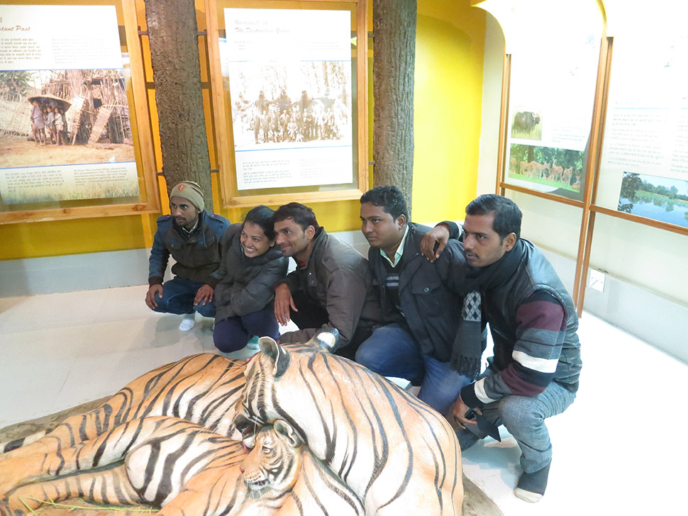 The closest most tourists will get to a tiger is a selfie with the plaster ones at the park visitor center.