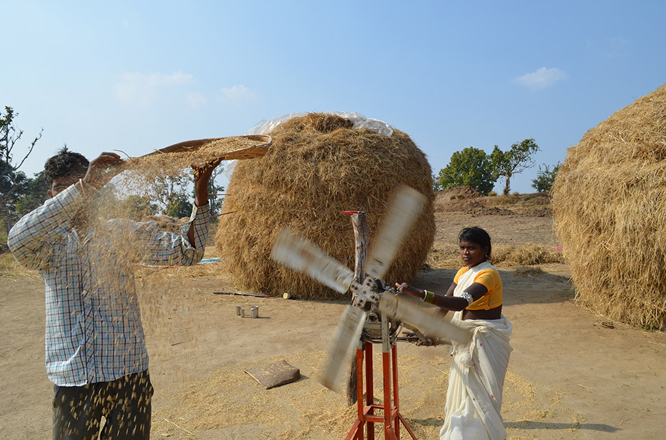 Food, and the quality of land to produce it, are paramount.  Resettled a few years ago, Suresh Kumar (with pan) and Jamni Bai separate rice from chaff with the help of a homemade fan.