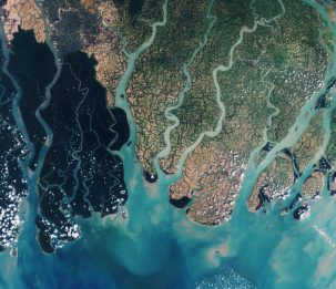 A view of the eastern part of the Sundarbans in Bangladesh showing seasonally flooded river basins. Image: European Space Agency, March 2016