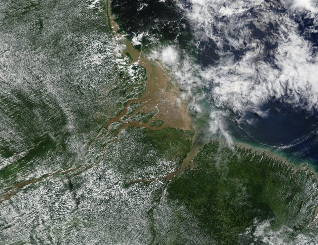 The Amazon River basin as seen by a NASA satellite, showing the impact of surface moisture and rivers on shallow clouds. (NASA)
