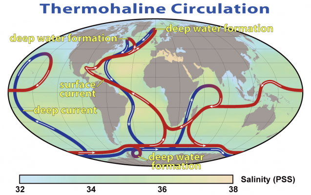 Thermohaline_Circulation_2