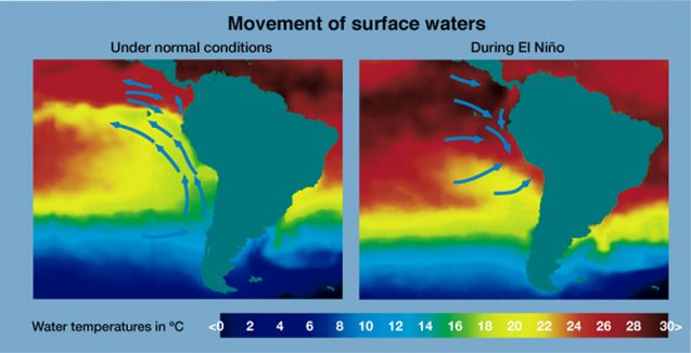 EL NINOMovement_of_surface_waters_during_El_Nino