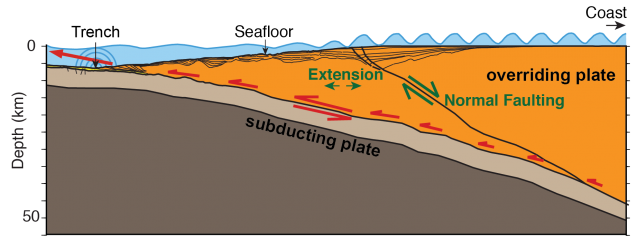 A tsunami can occur as ocean crust (brown area) dives under continental crust (orange), causing the ocean floor to suddenly moves. In one region off Alaska, researchers have found a large fault and other evidence indicating that the leading edge of the continental crust has split off, creating an area that can move more efficiently, and thus may be more tsunami-prone. (Anne Becel)