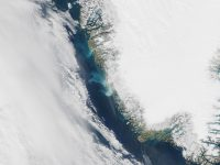 Satellite photo of meltwater from Greenland ice sheet. (NASA)