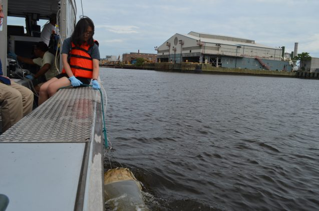 Barnard College student Shelly Lim drags a net through the waters of Newtown Creek, bordering Queens and Brooklyn.