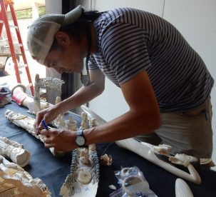 Kevin Uno marks carved tusks for sampling.