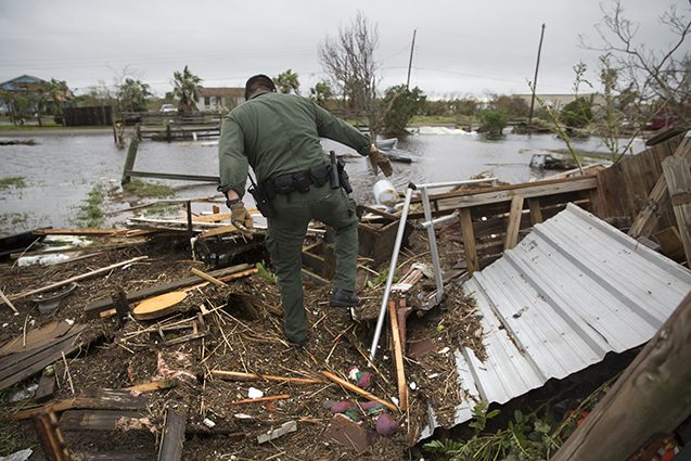 border patrol agent searches for hurricane survivors