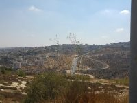 Glio, Israel