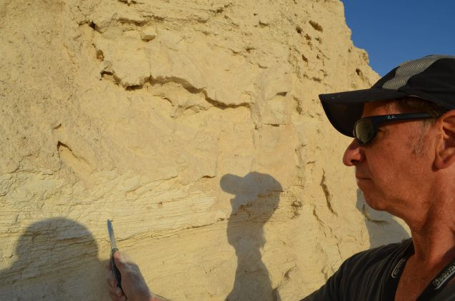 Geoscientist Steven Goldstein of Lamont-Doherty Earth Observatory scrapes at sediments from a long-gone seabed, part of a study on past megadroughts being carried out in Israel and Jordan.