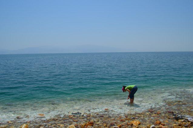 Lamont geochemist Yael Kiro samples salt deposits forming on the Dead Sea shore. (All photos: Kevin Krajick)