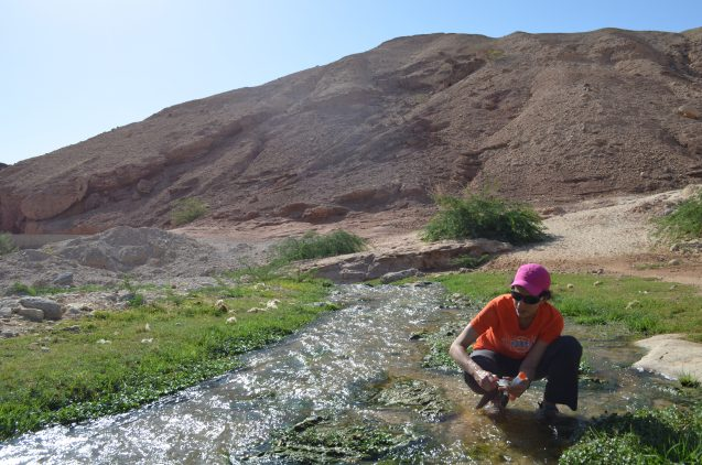 Part of the Dead Sea's water comes from small streams trickling through side canyons. The team sampled a series of these to analyze the water chemistry.