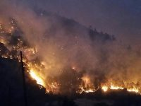 The Whittier fire in Santa Barbara County, California forced thousands of people to evacuate and consumed more than 18,000 acres in July 2017. Photo: U.S. Forest Service