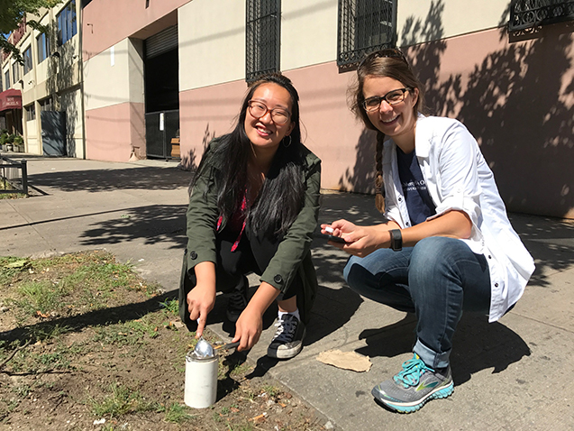 taking soil samples on sidewalk in greenpoint
