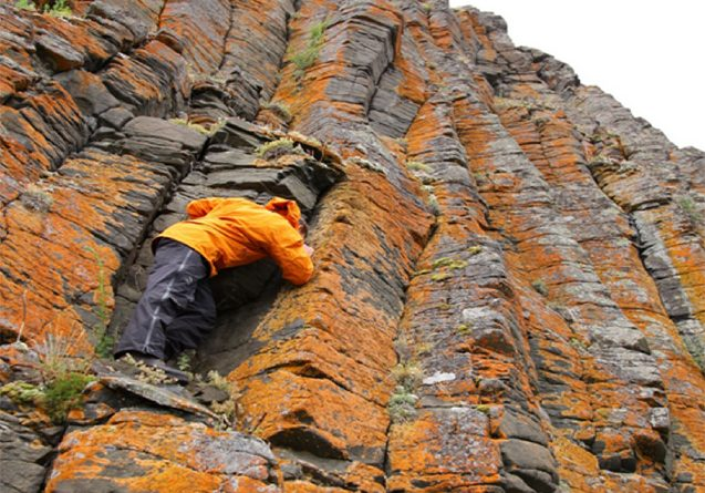 researcher in orange climbs up a rock wall