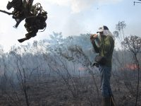 In the Peruvian Amazon, a researcher studies a fire set by farmers in order to clear land. (Kevin Krajick/Earth Institute)