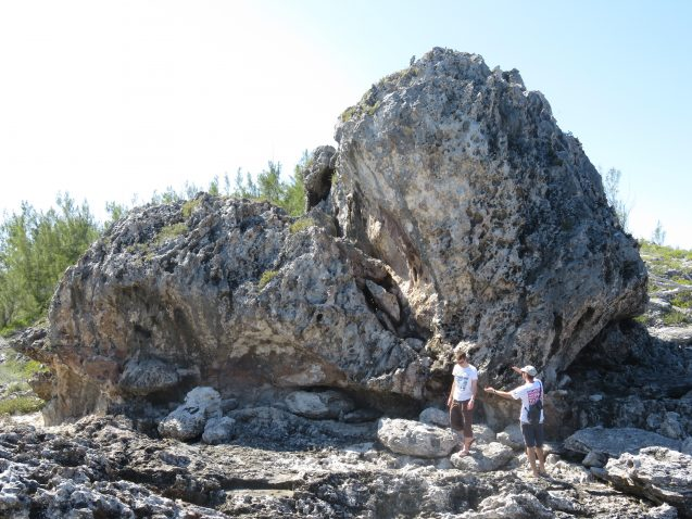 "Researchers at the 925-ton boulder called ""the bull."" (Elisa Casella)"