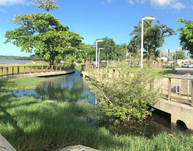 A view of the Parque del Litoral project in Mayaguez, a rebuilding of coastal forest, wetlands and dunes designed to naturally protect the coastline from storm surges and flooding. Photo: Local Office Landscape Architecture